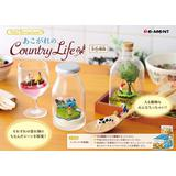 Petit Terrarium あこがれのCountry Life 1Box 6pcs