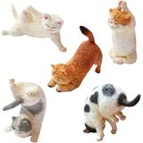 ANIMAL LIFE Baby Yoga Cat 1Box 6pcs